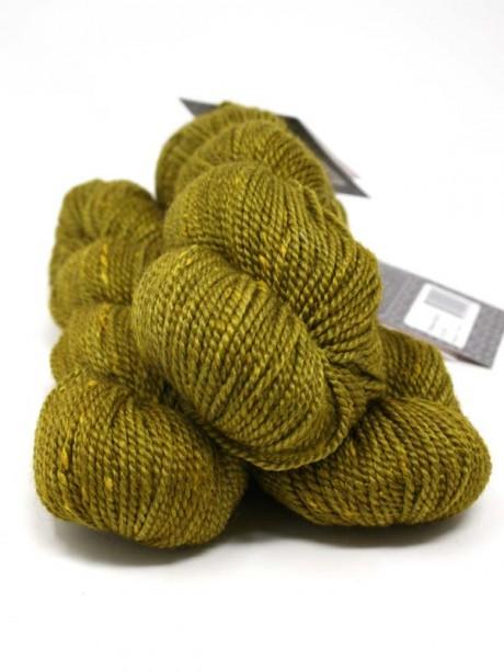 Acadia - Yellow Birch
