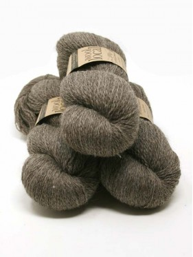 Wool Local - Ted 805
