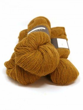Alpaca 2 - Golden Brown 3