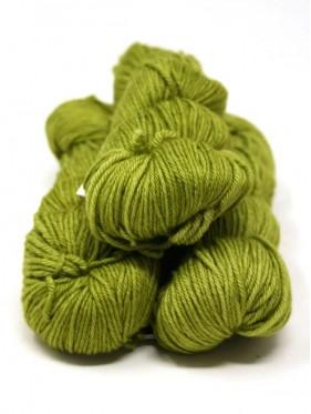 Caprino - Lettuce 037