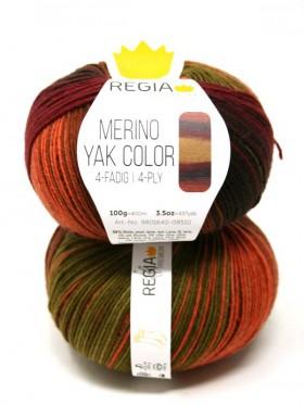 Regia - Merino Yak Premium Color 8510 Sun gradient