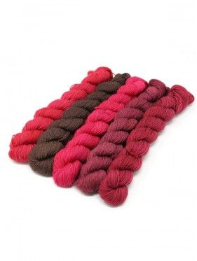 Lorna's Laces String Quintet Packs 5 mini skeins - Bongo