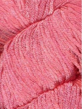 Araucaria - Caña ruca 209